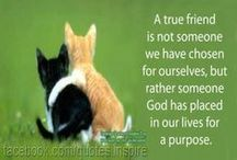 Sisters in Christ/Friendship / *A friend loveth at all times* Prov 17:17a