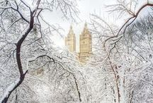 Winter Wonderland in NewYork / by Cosmopolitan Hotel TriBeCa