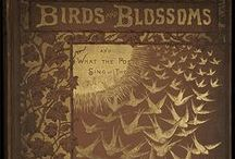 Vintage Ecology Books / Vintage books on ecology