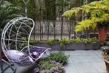Janice Parker Swings For The Trees / For this year's New York Kips Bay Decorator Show House, Janice Parker Landscape Architects creates an intimate getaway in an urban jungle.  More Interiors at: http://designlifenetwork.com