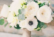 Wedding Ideas / I cant wait for my wedding day, ill have a lot of great ideas because of Pinterest! / by Cassidy Nichols