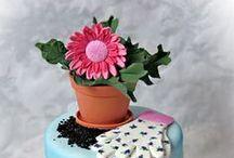 Torták kertészeknek / Torták kertészeknek