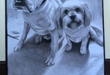 Pet Portraits / Pencil and charcoal drawings of your pets http://www.paultraits.co.uk/pets