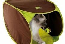 Zabawki dla kota / Polowanie na zawołanie - Twój kot to przecież natural born łowca ;) Zabawka dla kota - w zastępstwie...