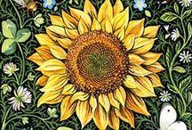 Sunflowers / by J.R.W.-M.