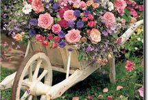 Matka příroda a zahrady