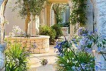 My dream garden - Álmaim kertje