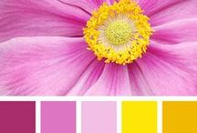 *** Color Inspirations *** / color inspirations