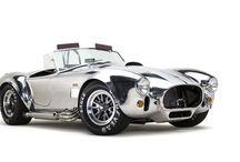 Cobra, Daytona & / Tigers, oh my! / by Mustang Jones