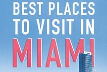 Just Amazing in Miami / One of the most vibrant city in the world, you can't visit the USA without thinking of Miami. Lovely beaches, lights are just awesome, the weather almost perfect. That's it, Miami is a living city, and we can't argue.
