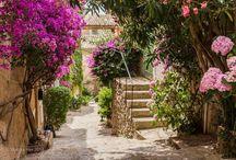 Jardines, Patios, Terrazas, Casas / by Nati Lugo