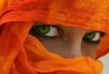 Orange / by SpecialDays Store