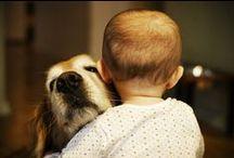 Dog lover ♥