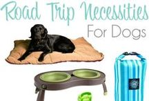 Pet Products to Try / Products that Dolly the Doxie hasn't personally tried but look like fun for you and your pet!