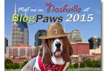 Pet Bloggers to Pin & Like / Pins from pet bloggers we we know and follow.