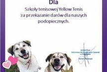 """Yellow Tenis w schronisku """"NA PALUCHU"""" / Wizyta trenerów Yellow Tenis w schronisku """"Na Paluchu"""" i przekazanie zebranych darów :-) Pierwsza akcja """"RAZEM GRAMY RAZEM POMAGAMY"""" - zapoczątkowana przez Panią Katarzynę Krzemkowską.   #Zwierzaki #pomagamy #yellowtenis #szkołatenisa #akademiasportu #psy #koty #napaluchu"""