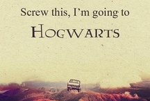 Hogwarts is My Home / Favorite Book: the Goblet of Fire Favorite Character: Hermione Granger  / by Haley