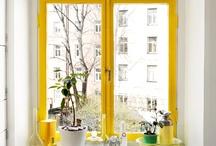 Doors & Windows / Interesting door ideas and window inspiration.