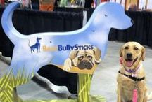 Best Bully Sticks Out & About / Check out where we've been in our community! We love sponsoring events and meeting the dogs lovers in RVA!