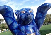 #Bear #Ours #Panda / Ça Teddy ou pas.... ?