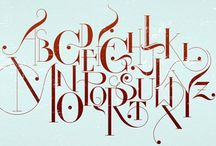 Typography / by Sena Walsh