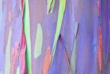 Colors Patterns-Pantone dos / by Ale Fella Miscelaneas Arte Utilitario