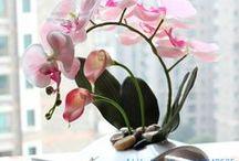 Ikebana / Japanese flower art