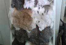 Dierenvachten & huiden / De prachtige dierenhuiden & vachten die wij aanbieden. Super in een sober, stoer, landelijk interieur