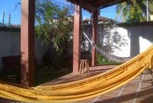Life is a Hammock / Life is so many things, as simple or complicated as you let it be. / by Life is a Hammock