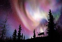 Northeast USA & Northeast Canada / by Marilyn Pfingston