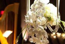 Elegance & Simplicity / All white wedding....