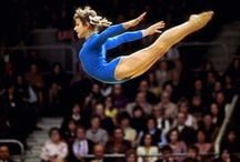 Gymnastics / For Wendy, my gymnast sister, with whom I share some great memories of past performances. / by Lisa Kowal