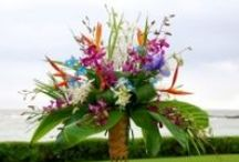 Kauai Wedding Flowers / Kauai is home to many beautiful tropical flowers which can be used in a wedding. Check out this amazing collection of Kauai wedding flowers! #kauaiweddingflowers