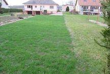 Refaire la pelouse ou gazon / Au fil des ans, les pelouses ont tendance à mal vieillir. Elles deviennent de moins en moins belles et se dégarnissent par endroit.