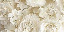 White on white wedding cakes
