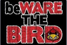 LOUiSViLLE CARDiNALS ♡ / Louisville Cardinal all day, everyday .. #l1c4 / by Laura Burgess