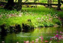 Krajinky // Nature