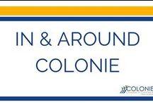 In & Around Colonie