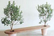 Patio/Garden ideas