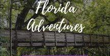 Florida Adventures / Fun things to do in Florida.  Adventures in Florida.  Florida travel.