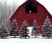 Holidays - Christmas / Decor and gift ideas