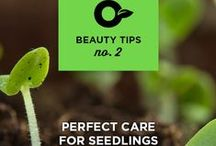 Beauty tips / Because PRO-MIX gardening and lawn care products are a little like beauty products for your yard, don't you think?