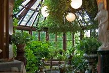 Home: Conservatories, Greenhouses, Sunrooms