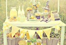 Rustic Lemonade + Pie Party