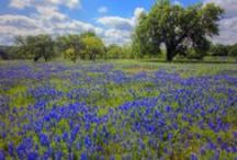 Hill Country Getaways / Even though Rancho Sienna is a hill country getaway in itself, there are many other Texas treasures to visit nearby!