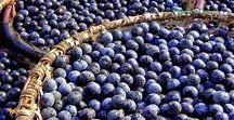 Frutas Brasil / Frutas do Brasil ou que se plantam no Brasil