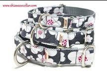 Shiawase Collar-4 / 犬の首輪とリード しあわせカラー  https://www.shiawasecollar.com/
