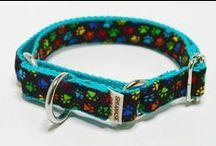 Shiawase Collar-3 / 犬の首輪とリード しあわせカラー  https://www.shiawasecollar.com/