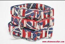 Shiawase Collar-1 / 犬の首輪とリード しあわせカラー  https://www.shiawasecollar.com/