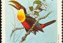 Brasil - selos / stamps / Conhecer mais sobre a cultura brasileira através dos selos.
